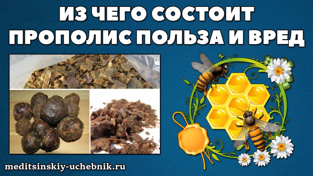 Что-такое-прополис-пчелиный-из-чего-состоит,-польза-и-вред