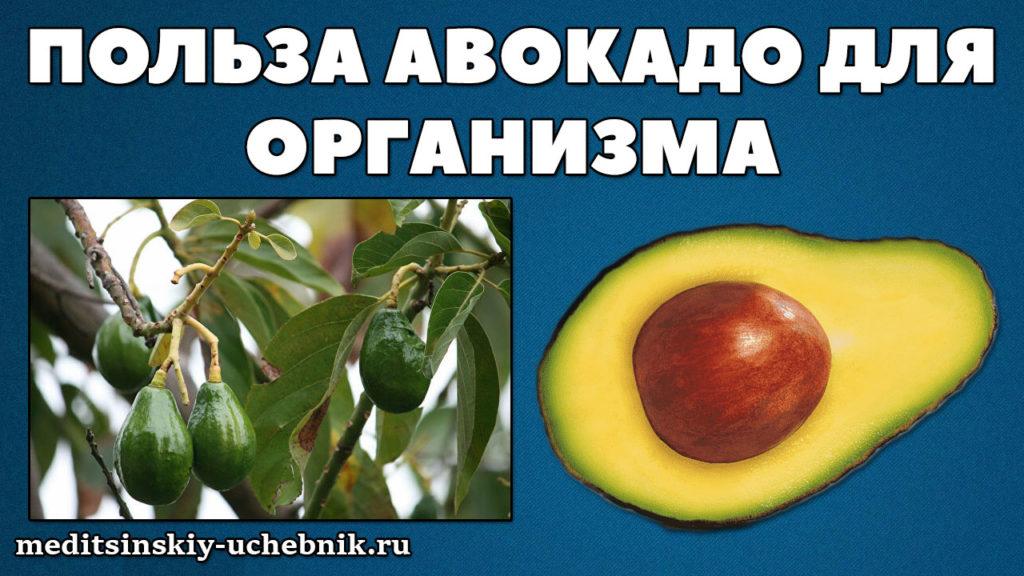 Польза-авокадо-для-организма-человека-для-женщин-и-мужчин